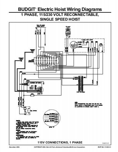budgit hoist wiring diagram 3 phase Download-BUDGIT' Electric Hoist Wiring Diagrams Hoists Direct 5-t