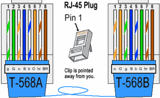 cat 6 wiring diagram b Download-Color Coding Cat 5e and Cat 6 Cable Straight Through and Cross Over 10-n