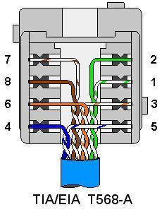 ce tech cat5e jack wiring diagram Download-Terminating and Wiring Wall Plates cat5 coaxial phone s video 5-s