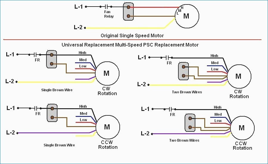 century 2 speed motor wiring diagram Download-Century Electric Motor Wiring Diagram Bestharleylinks Info Lovely 19-a