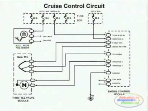 ew 36 wiring diagram Collection-Cruise Control & Wiring Diagram 2-d