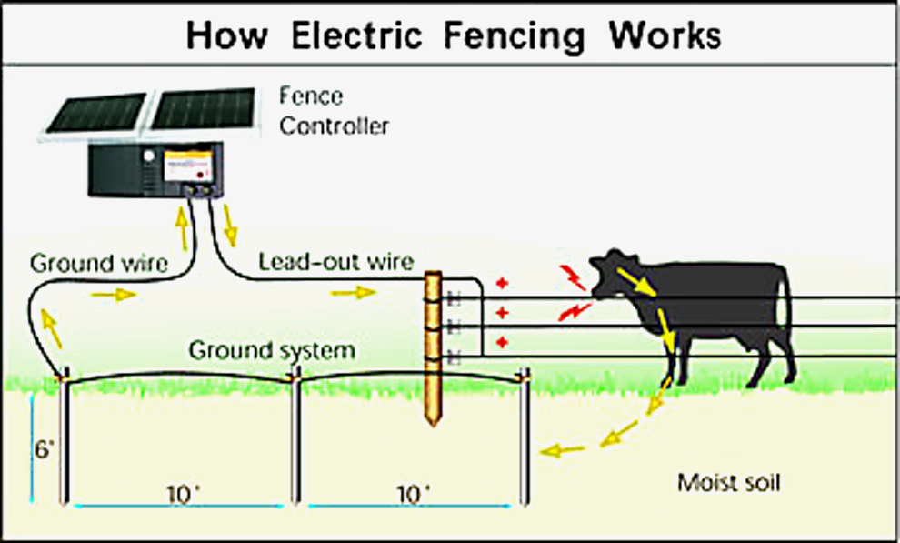 invisible fence wiring diagram Collection-Electric Fence Installation Diagram Beautiful Other Home Security Merlin 4 Joule Energizer Ideal for Security 1-e