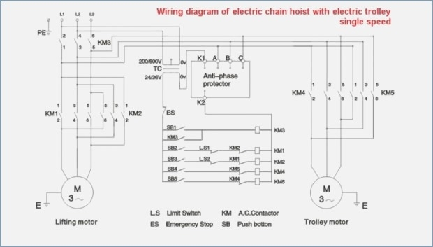Yale Hoist Wiring Diagram Sample